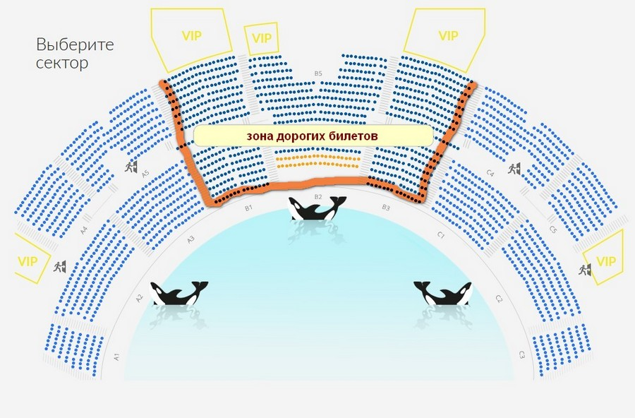 Москвариум шоу билеты афиша брянск кино панорама цены